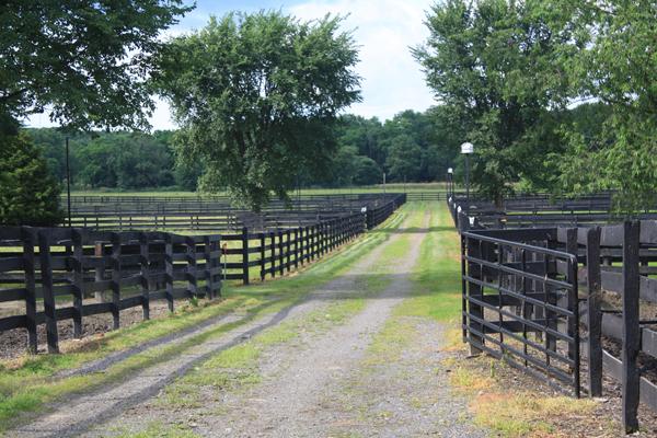 Blairwood Farms Horse Fencing