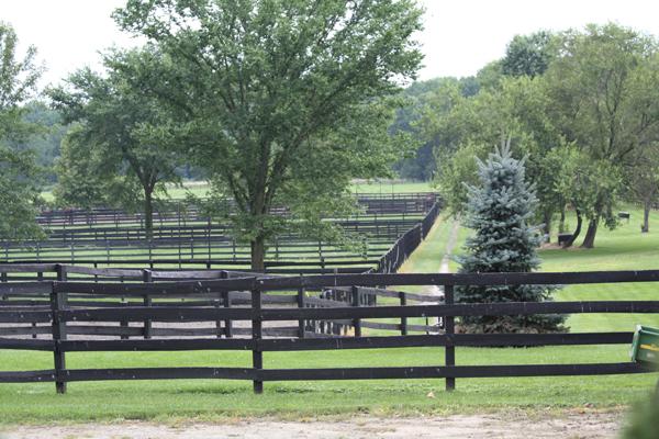 Blairwood Farms view of farm