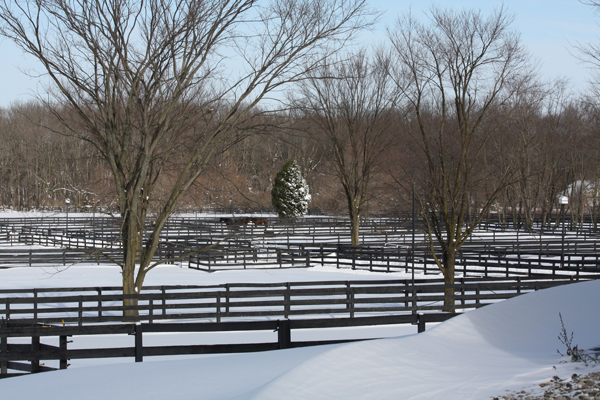 Blairwood Farms beautiful winter-scape