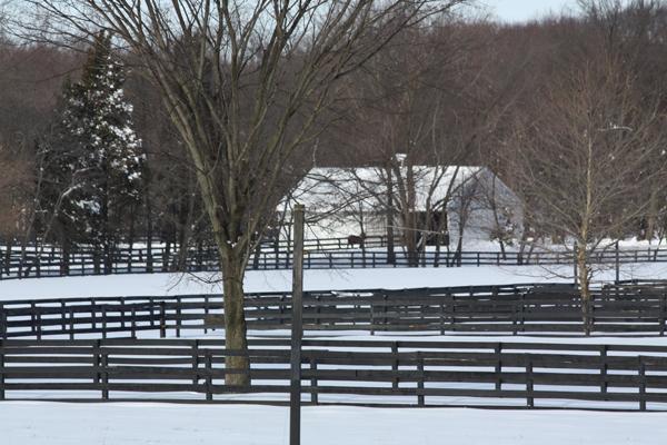 Beautiful view Blairwood Farms NJ